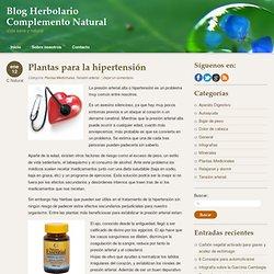 Plantas para la hipertensión