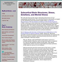 Brain anatomy - the hippocampus, hypothalamus, thalamus, amygdala, and basal ganglia.