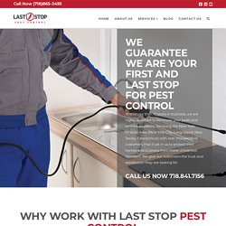 Hire Best Pest Control Services in New York and Safe Your Home