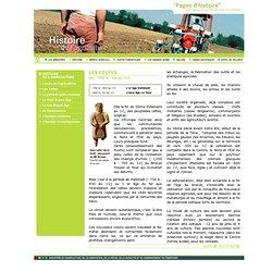 Histoire de l'agriculture - Les Celtes