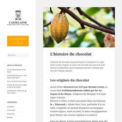 L'histoire du chocolat : Découvrez les origines du chocolat
