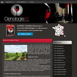 Histoire de la vigne en France