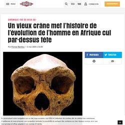 Un vieux crâne met l'histoire de l'évolution de l'homme en Afrique cul par-dessus tête