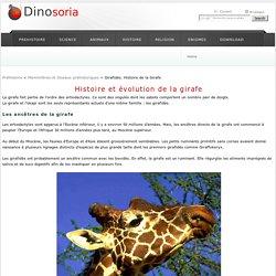 Histoire de la Girafe. En Images. Dinosoria