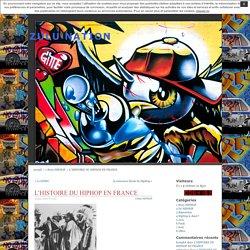Zulu Nation - L'histoire du Hip-Hop en France