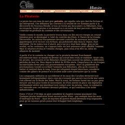 Histoire: La Piraterie