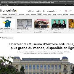L'herbier du Muséum d'histoire naturelle, le plus grand du monde, disponible en ligne