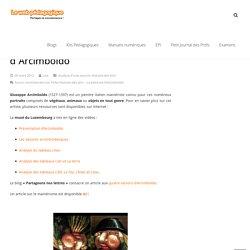 Fiche Histoire des arts - La peinture d'Arcimboldo - Brevet des collèges 2016