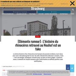 [Démonte rumeur] - L'histoire du rhinocéros retrouvé au Neuhof est un fake