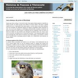 Histoires de Faucons à l'Université: Les oiseaux de proie à Montréal