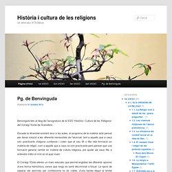 Història i cultura de les religions