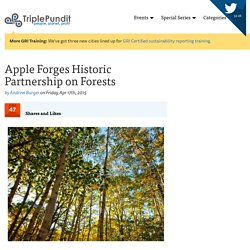 Apple Forges Historic Partnership on Forests