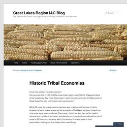 Historic Tribal Economies