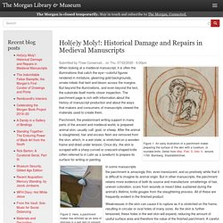 Hol(e)y Moly!: Historical Damage and Repairs in Medieval Manuscripts