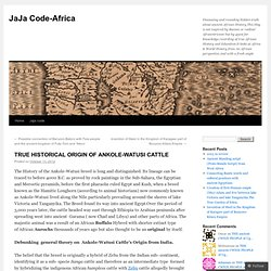TRUE HISTORICAL ORIGIN OF ANKOLE-WATUSI CATTLE