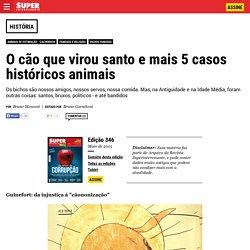 O cão que virou santo e mais 5 casos históricos animais