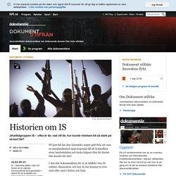 Historien om IS