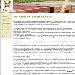 Historique de l'abeille en France - MELLIFERA