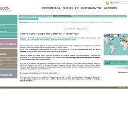 Historique - Charançon rouge - expansion mondiale - expansion var - FREDON PACA
