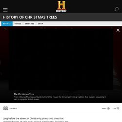of Christmas Trees — History.com Articles, Video, Pictures and Facts