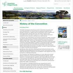 History of the Convention