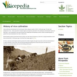 History of rice cultivation -Includes links to countries who produce rice.