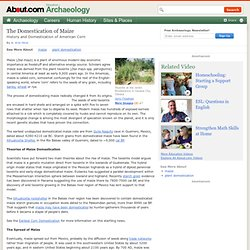 Maize - History and Domestication of American Corn