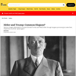 Hitler and Trump: Common Slogans?