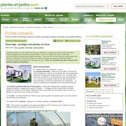 Hivernage : protéger vos plantes en hiver
