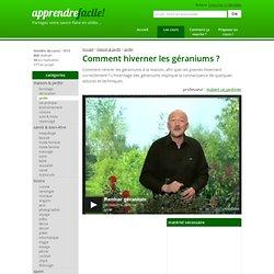G ranium pearltrees for Comment arroser les geraniums