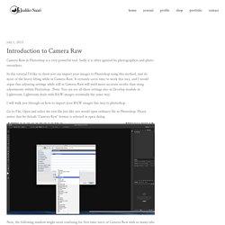 Hiyayaakko | Introduction to Camera Raw