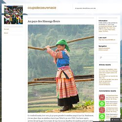Au pays des Hmongs fleurs