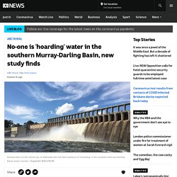 No-one is 'hoarding' water in the southern Murray-Darling Basin, new study finds
