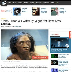 'Hobbit Humans' Actually Might Not Have Been Human