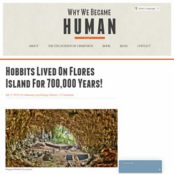 Hobbits lived on Flores Island for 700,000 years