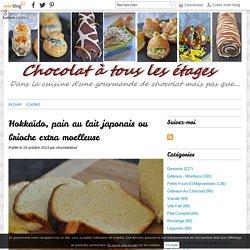 Hokkaïdo, pain au lait japonais ou brioche extra moelleuse -