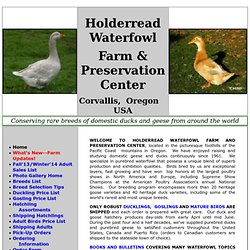 index--homepage Holderread Waterfowl Farm & Preservation Cen