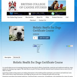 Holistic Health For Dogs Certificate Course - British College Of Canine Studies