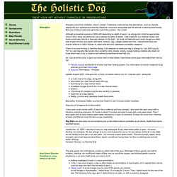 Holistic Dog - Symptoms A through C
