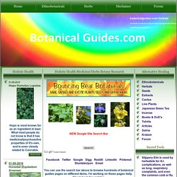 Holistic Health Medicinal Herbs Botany Research