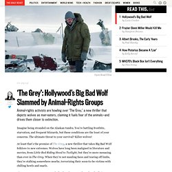 'The Grey': Hollywood's Big Bad Wolf Slammed by Animal-Rights Groups