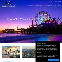 property management hollywood
