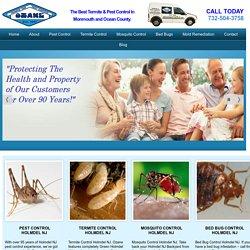Holmdel NJ Pest Control Termite Control Ozane.com