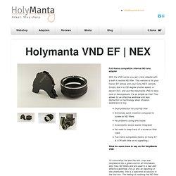 Holymanta