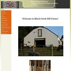 Black Creek Hill Farms