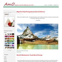 Home - AmO Images: Capturing the Beauty of Life - AmO Images: Capturing the Beauty of Life