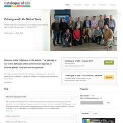 Catalogue of Life - 24th October 2011 :: Search all names