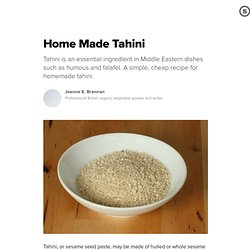 Home Made Tahini: Make Your Own Tahini Sesame Seed Paste
