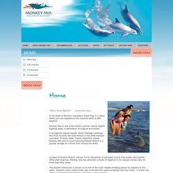 Home - Monkey Mia Dolphin Resort