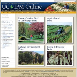 Home Page - UC Statewide IPM Program